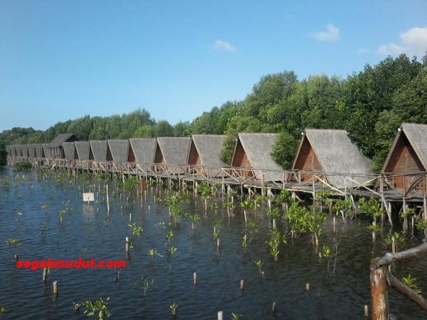 Deretan penginapan tenda permanen atas air, Taman Wisata Alam Angke Kapuk.