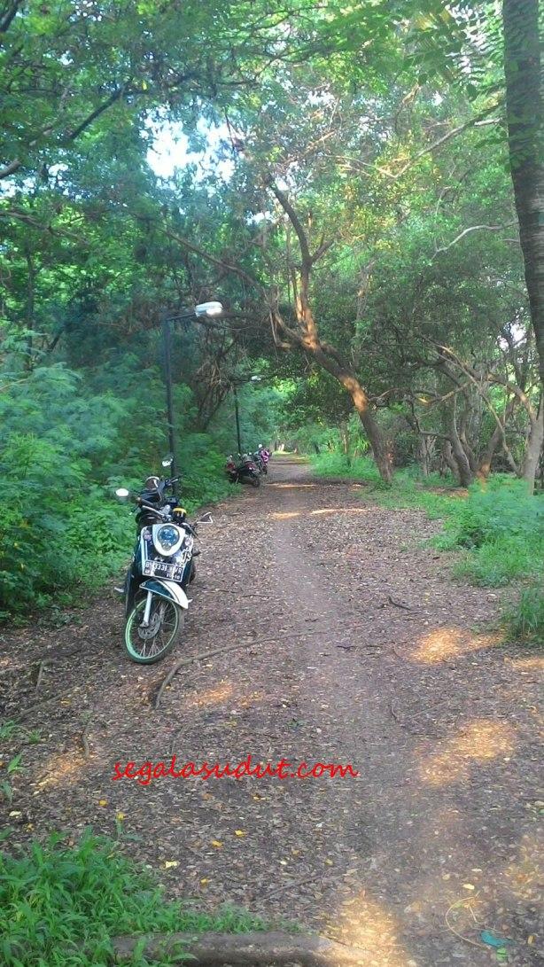 motor-ekowisata-mangrove-copy
